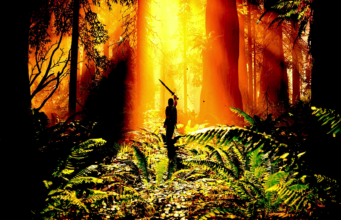 Shadow of the Colossus Remake se luce en 15 minutos de gameplay